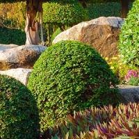 Landschaftsbau Erfurt Galabau Garten Landschaftsgestaltung